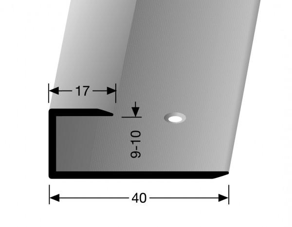 Gleitfugenprofil silber PF 201, 10 mm